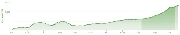 Mountain View Climb - Elevation Profile
