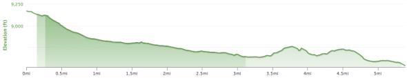 Mountain View Descent - Elevation Profile