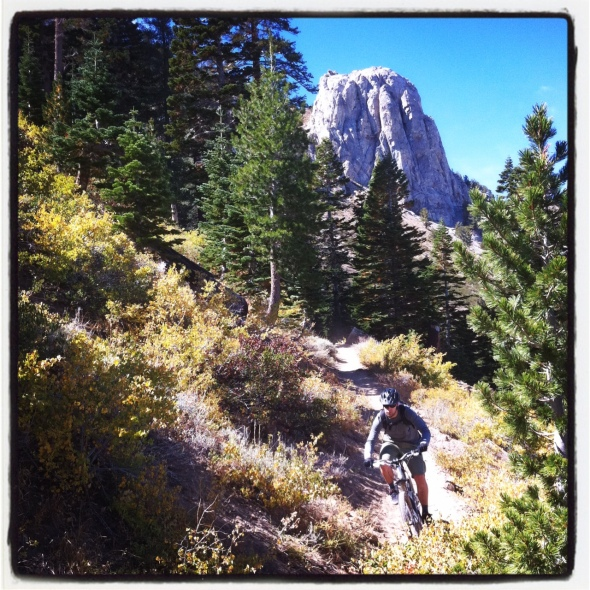 Mammoth Rock lurking in the background while shredding sweet singletrack