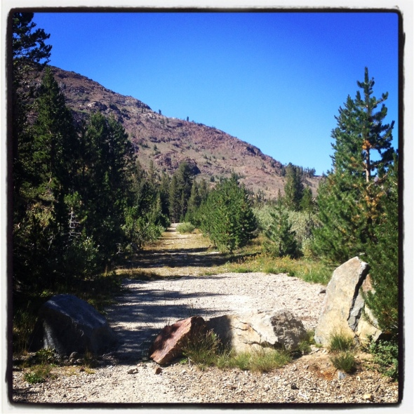 Ride starts at the boulders that block the old mining road.