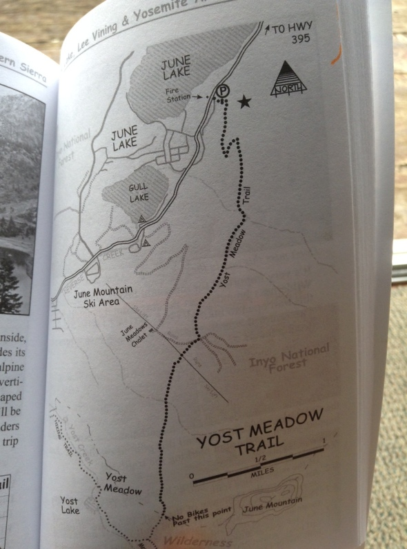 This map from the Mountain Biking Mammoth Book (which was approved by the USFS) shows the Wilderness Boundary very clearly