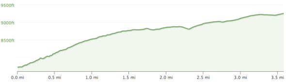 Elevation Profile for the climb